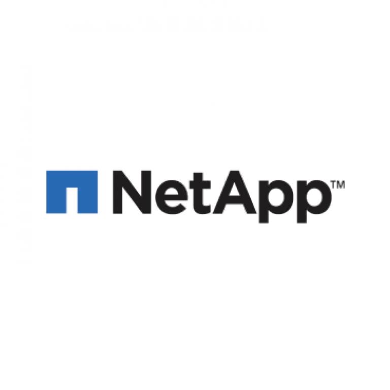 vem-sistemi-partner-logo-netapp-370x370