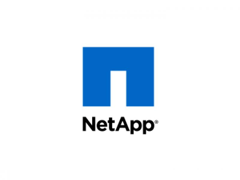 vem-sistemi-partner-logo-netapp-v2-370x370